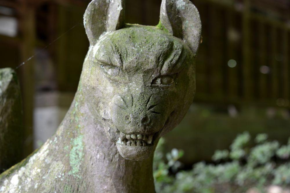 南湖神社-7
