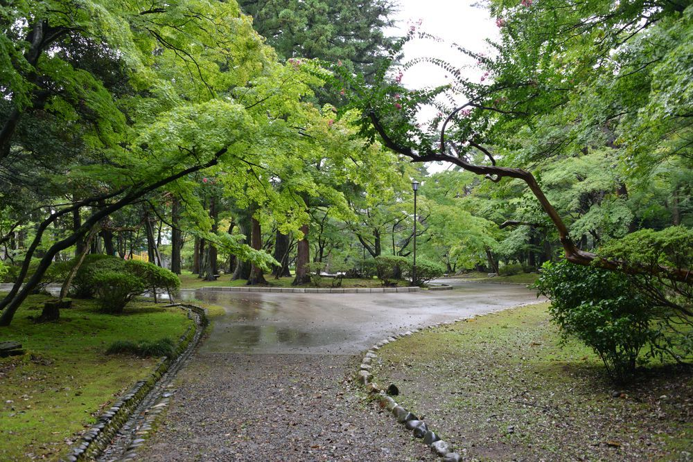 雨の公園-2