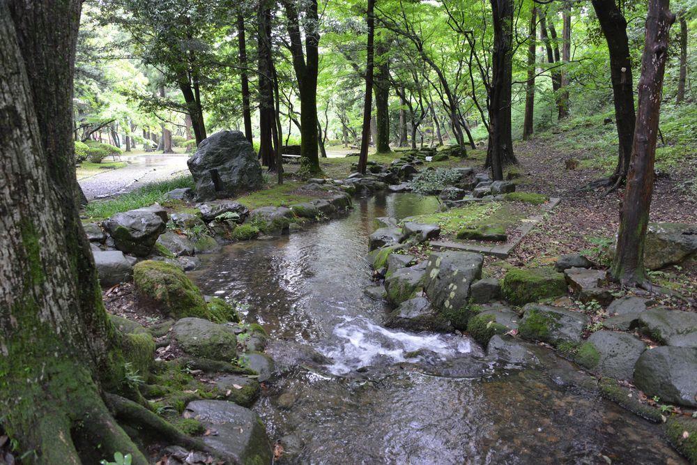 雨の公園-3