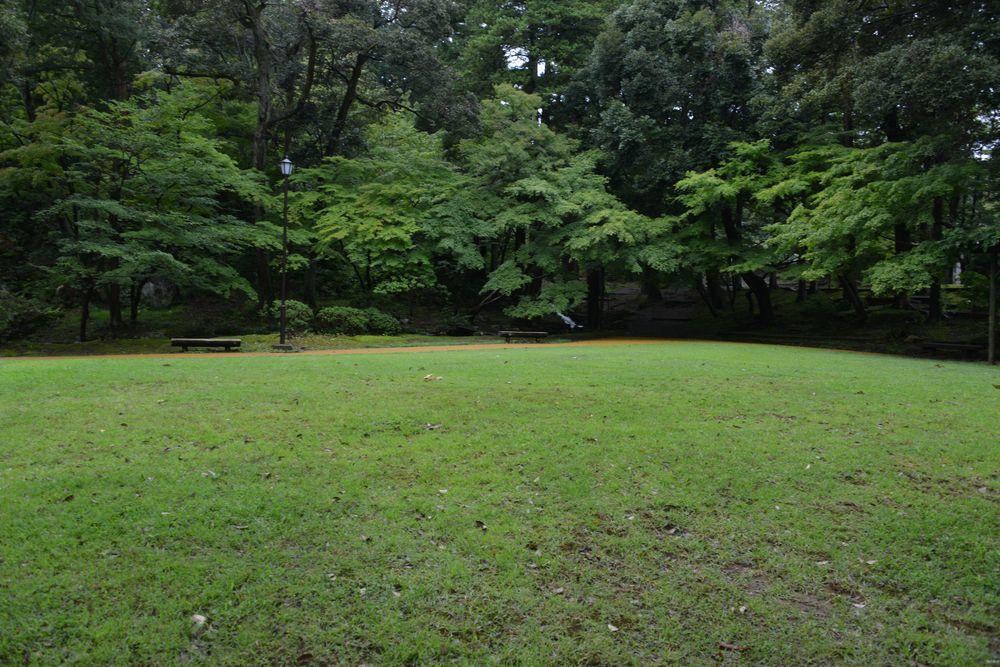 雨の公園-5