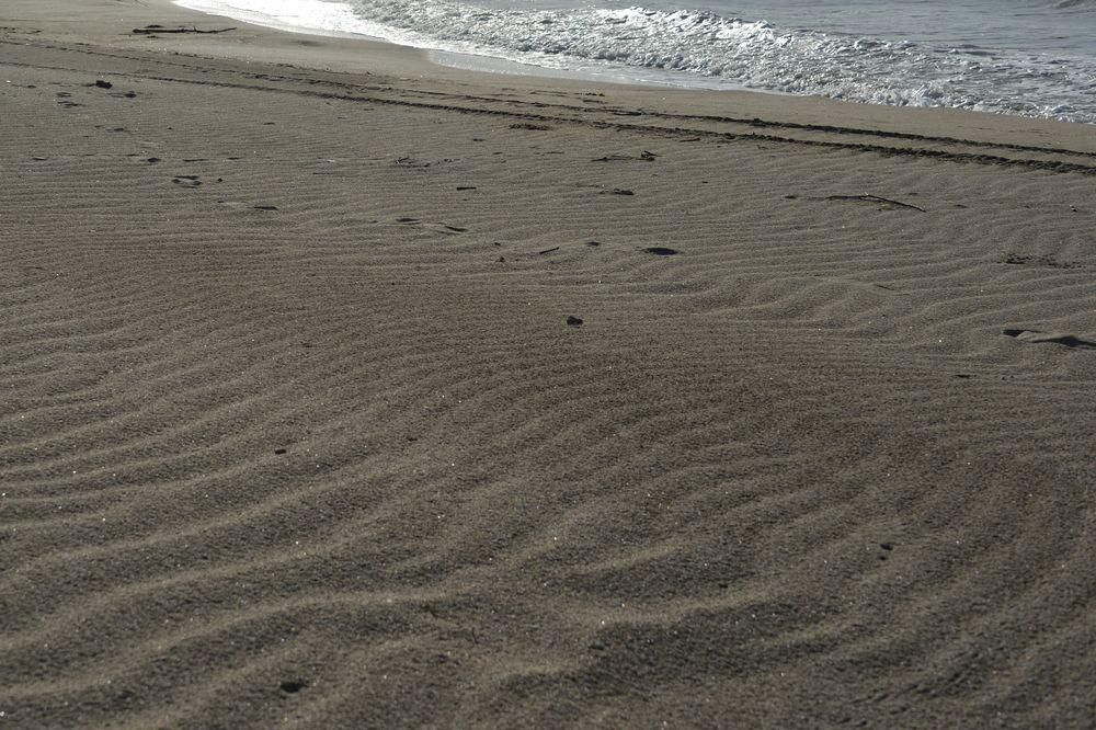 砂の浜-5
