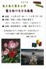 s-IMG_20180917_0001.jpg
