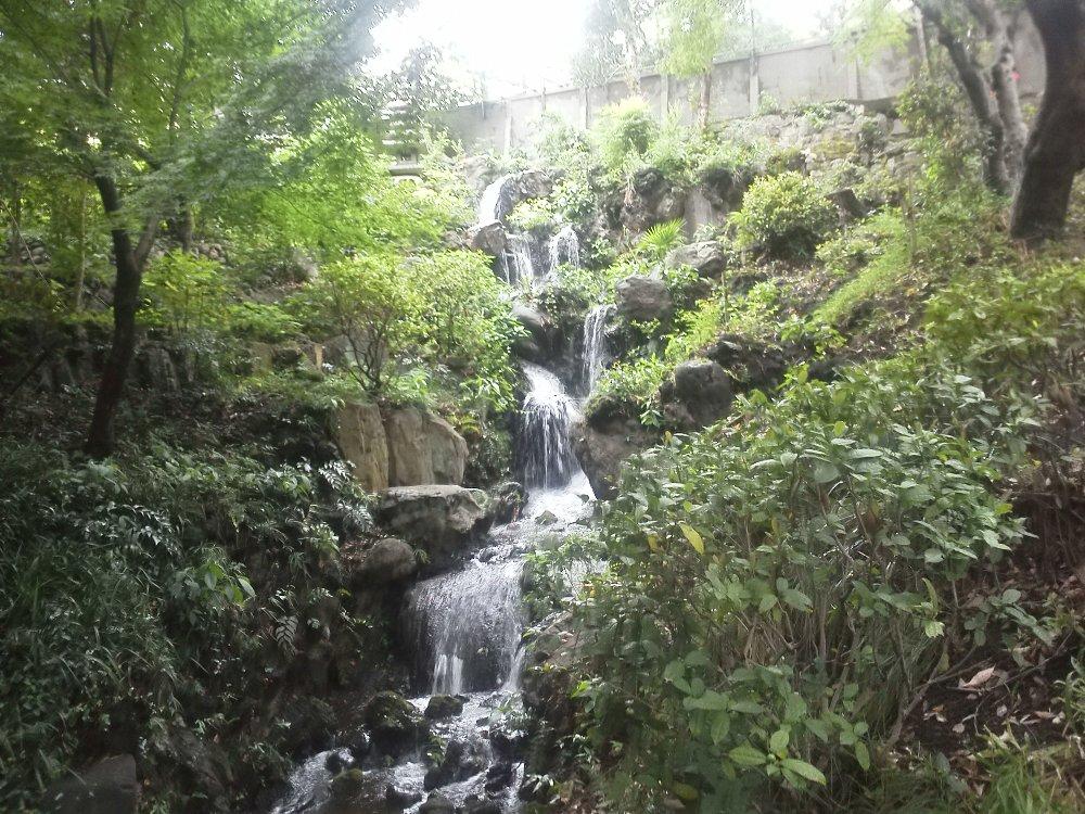 F1000280須藤公園8月7日須藤の滝