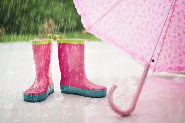 rain-791893_640_201809161954115eb.jpg