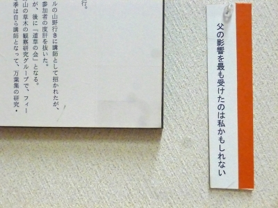 P1010874.jpg