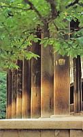 唐招提寺列柱