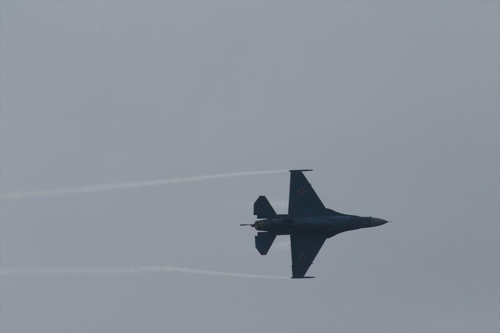 機体の左を下にしての飛行_3