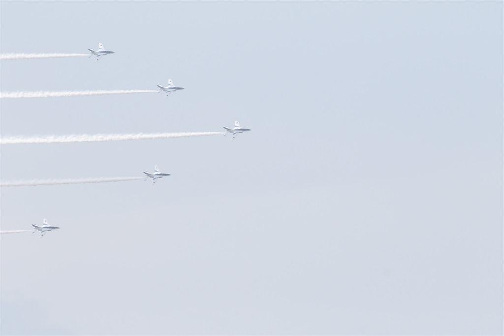 編隊飛行が見事_24
