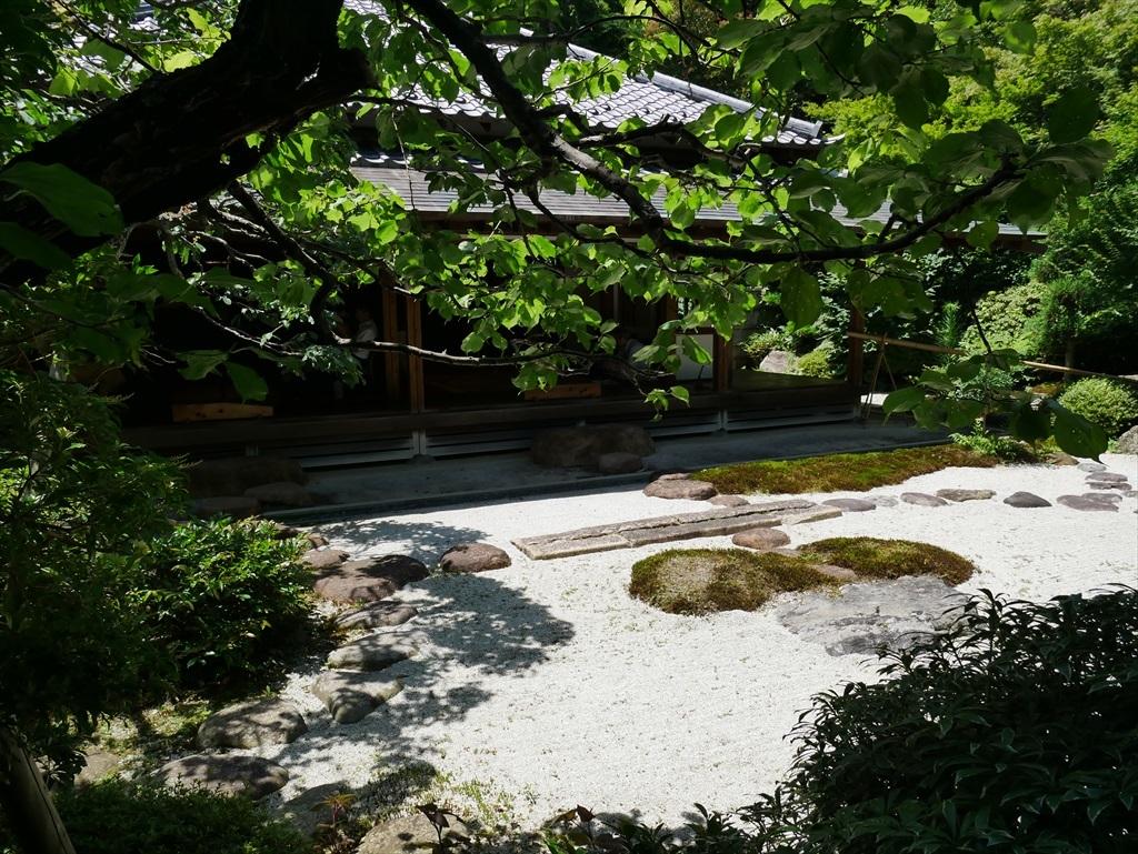 喜泉庵(きせんあん)と枯山水の庭_6