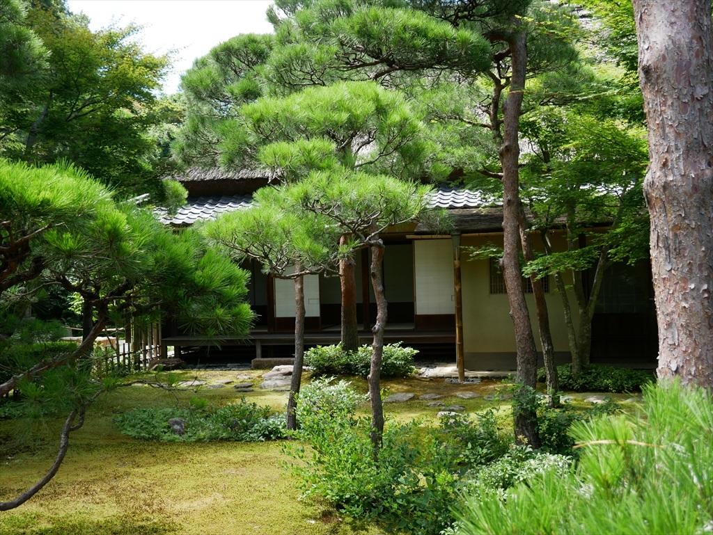 庭園(1)_5