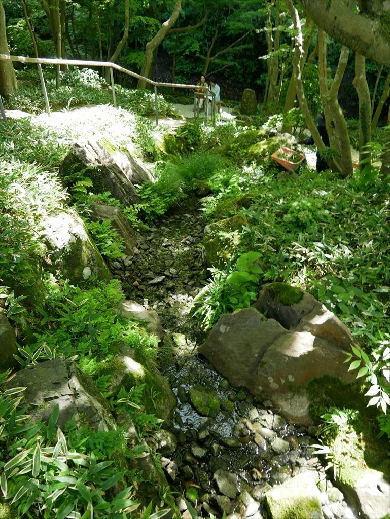 庭園(2)_1