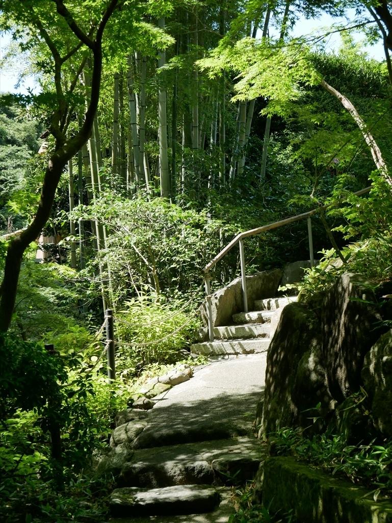 庭園(2)_6