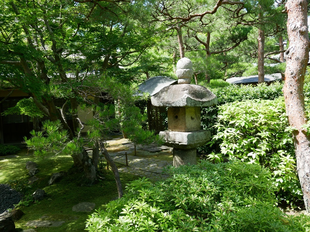 庭園(2)_12