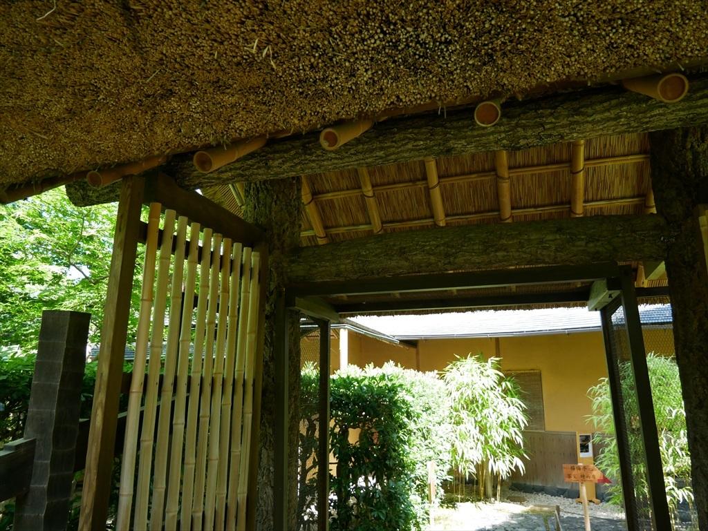 庭園(2)_25