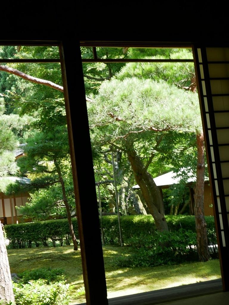 庭園を眺める_4