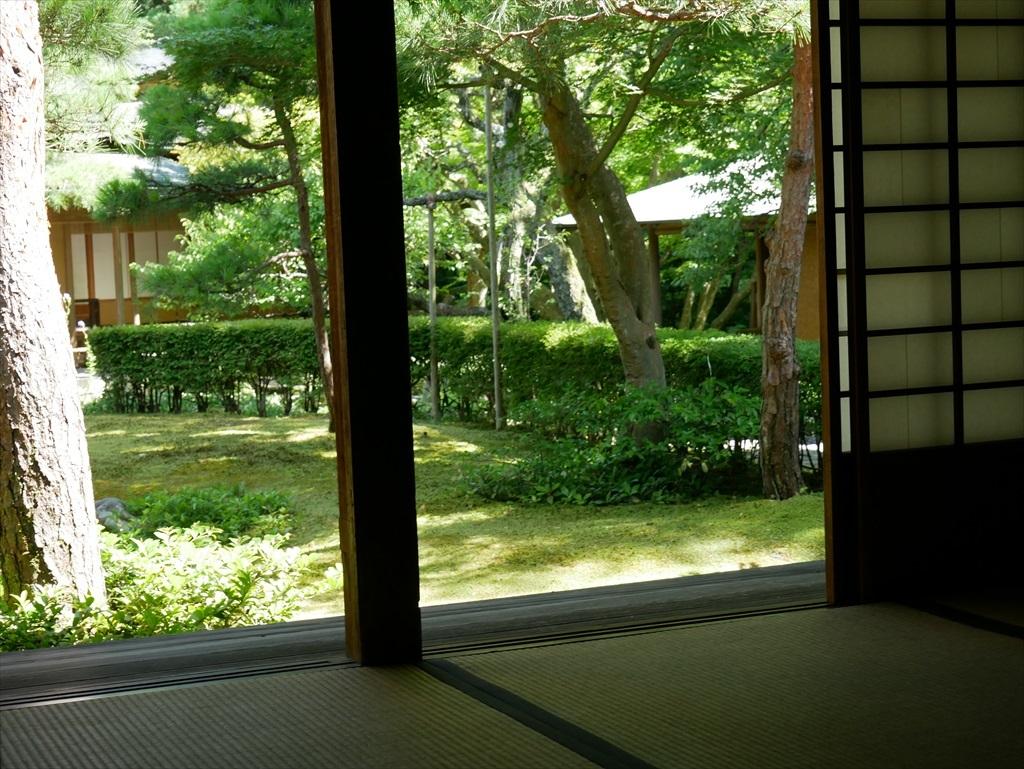 庭園を眺める_5