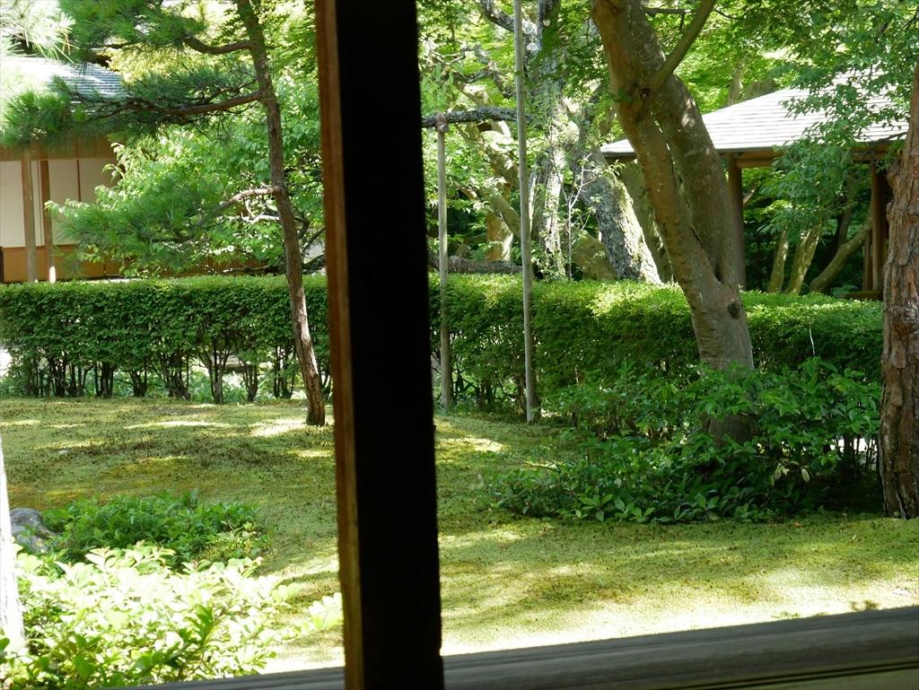 庭園を眺める_6