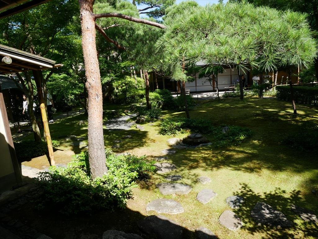 庭園を眺める_7