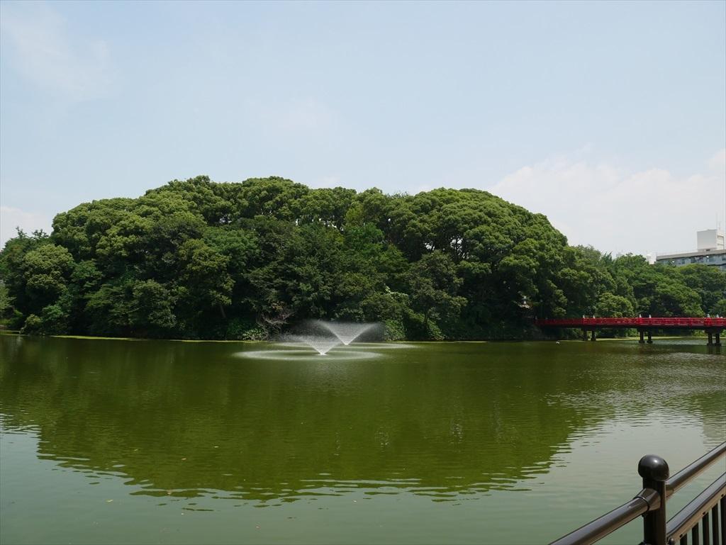 河底池_4
