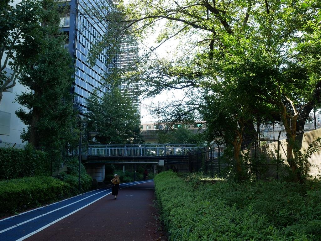 東京工業大学の校舎が近くに見えてきた_1