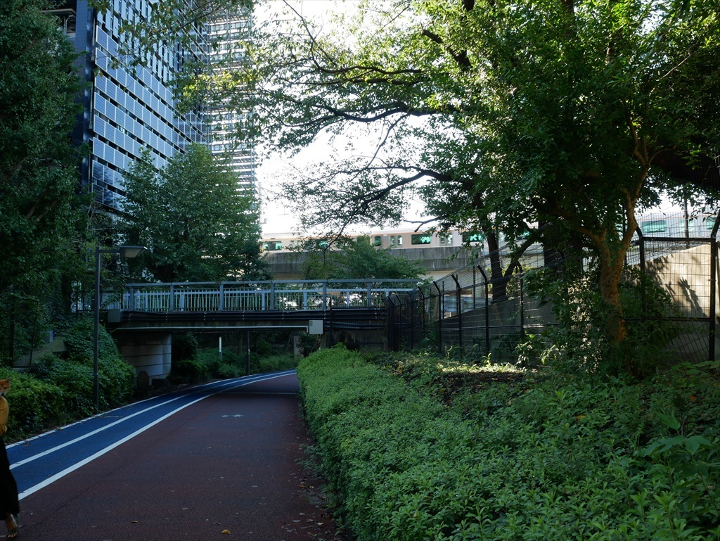 東京工業大学の校舎が近くに見えてきた_2