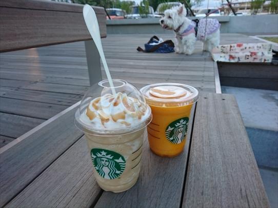 cafe6_20180923172535786.jpg
