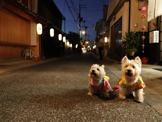 naramachi5.jpg