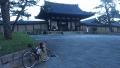 180923早朝の法隆寺。まだ門も閉まってる