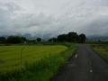 180901雨模様の桂川CRを北へ