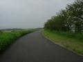 180908木津川右岸を御幸橋方面に戻る