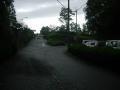 181006ベニーCC。雨が強くなってきた