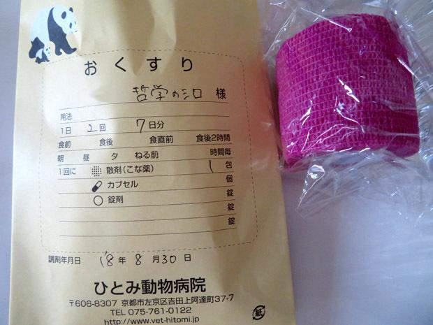 shiro-1634.jpg
