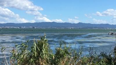 台風20号接近中の琵琶湖南湖(YouTubeムービー)