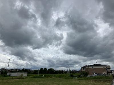 台風21号の強風で将棋倒しになった揚陸中のヨット