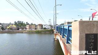 電線と橋の位置関係が悪過ぎるぅ〜(泣)