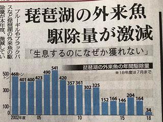 琵琶湖の外来魚駆除量が激減