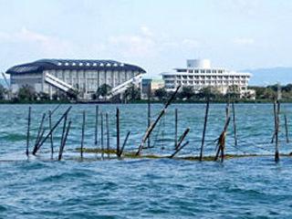 台風21号の強風で被害を受けたとされるエリ