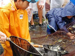 宮ケ浜で開催された体験地引き網イベント