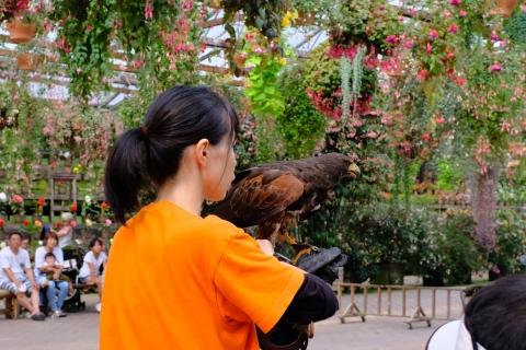 22花鳥園