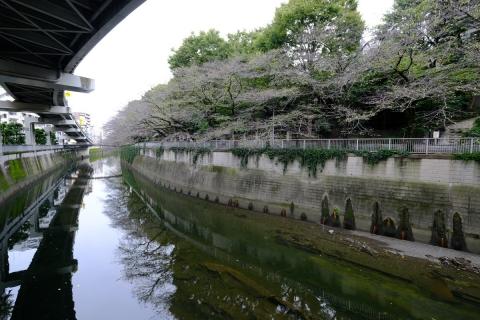 01神田川