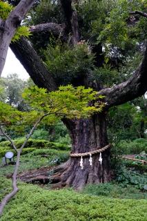 04b椿山荘