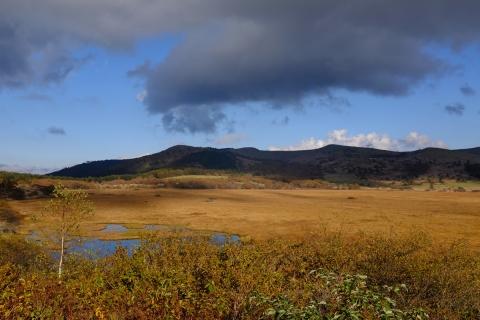 22八島湿原