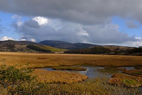 23八島湿原