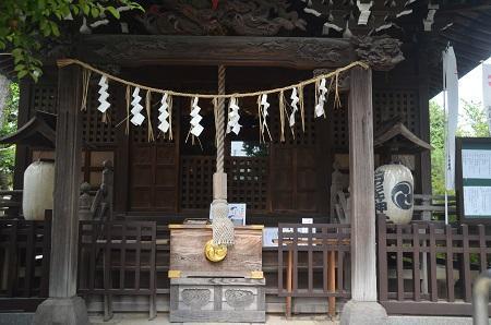 20180802渋江白髭神社07
