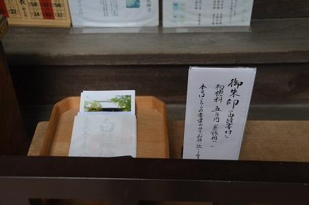 20180802渋江白髭神社16