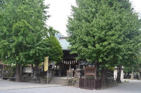 20180802渋江白髭神社28
