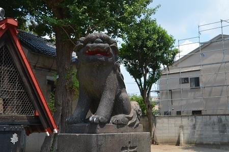 20180802平井天祖神社16