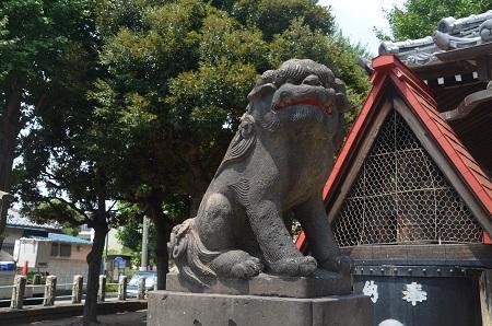 20180802平井天祖神社15
