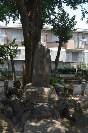 20180802平井天祖神社23
