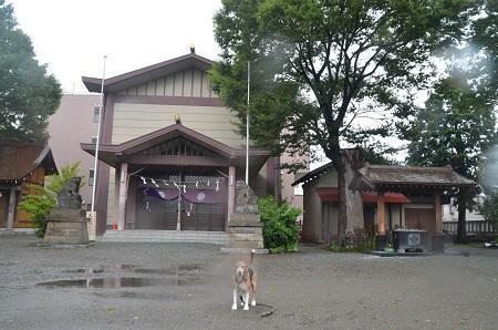 20180808日野八坂神社07